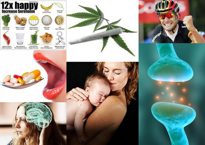 Raphael und Rafael: Die Biologie und das Glück (Collage)