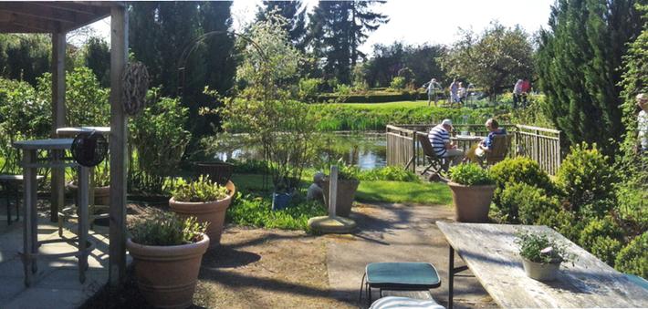 Bild: ein Ausflug zum Cafe Ehrgarten in Quaal, Gartenteich