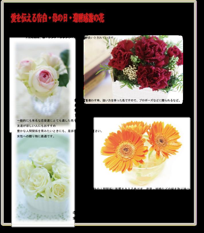 愛を伝える告白・母の日・還暦のお祝いの花,赤・ピンク・オレンジ・白の花が良いとされています。