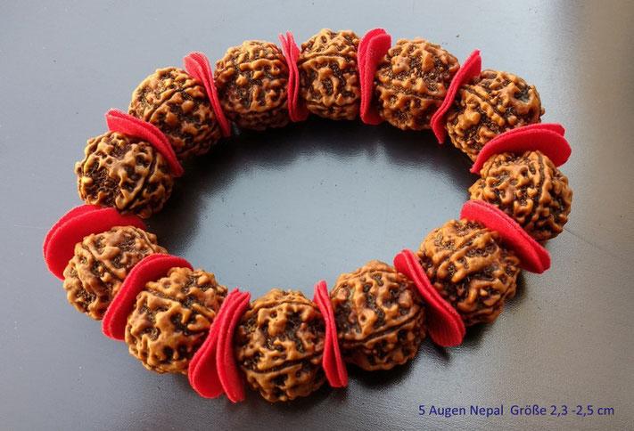5 Augen Rudraksha Armband xl Rudrakshas Jupiter zugeordnet für Glück und Gesundheit