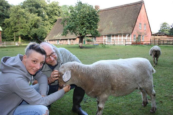 Isabelle und Matthias Krämer haben sich in der Wingst einen Traum erfüllt: Sie haben einen Lebenshof für Tiere gegründet. Bislang sind schon fünf Schafe und drei Hunde eingezogen. Es sollen aber noch mehr Mitbewohner werden. Foto: van Veenendaal