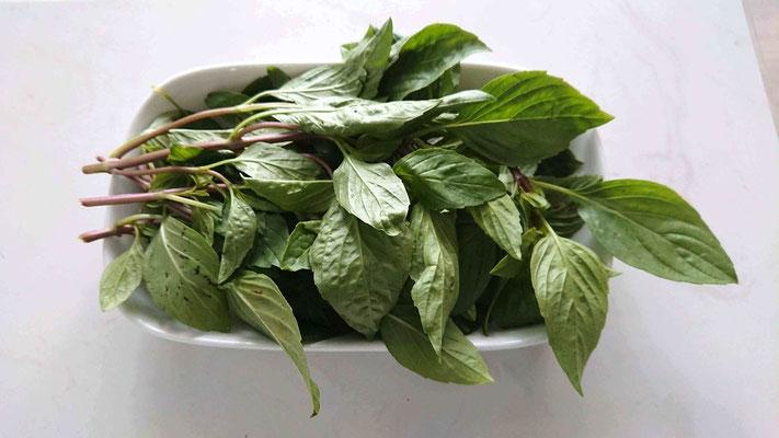 frische-kraeuter-fuer-vietnamesisch-kochen-im-salzwasser-waschen