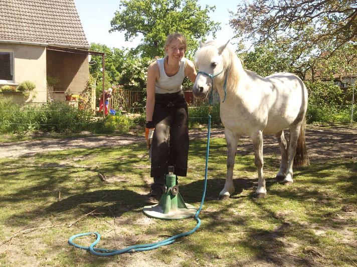 barhuf-nordost | Katharina Klann mit Kundenpferd