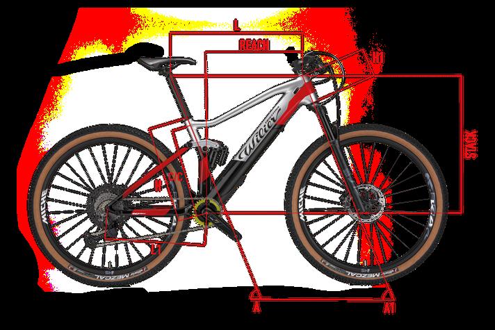 Wilier 101FX HY Geometrie  Italian Cycle Experience