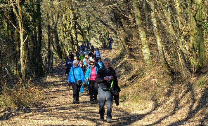Auf dem Weg zum Roßbacher Häubchen