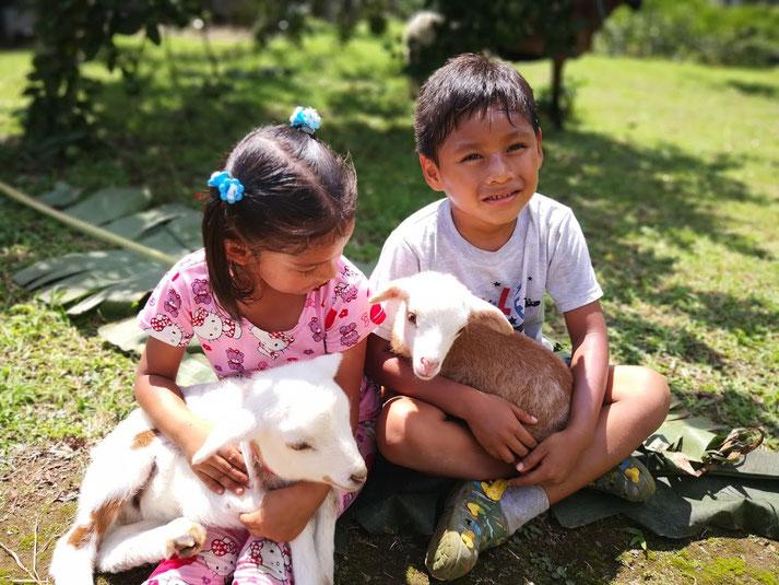 Die Bauernhöfe (Fincas) der Kinderheime dienen in der Pandemie nicht nur der Selbstversorgung, sondern geben den Kindern auch Sicherheit, sinnstiftende Beschäftigung und Freude.