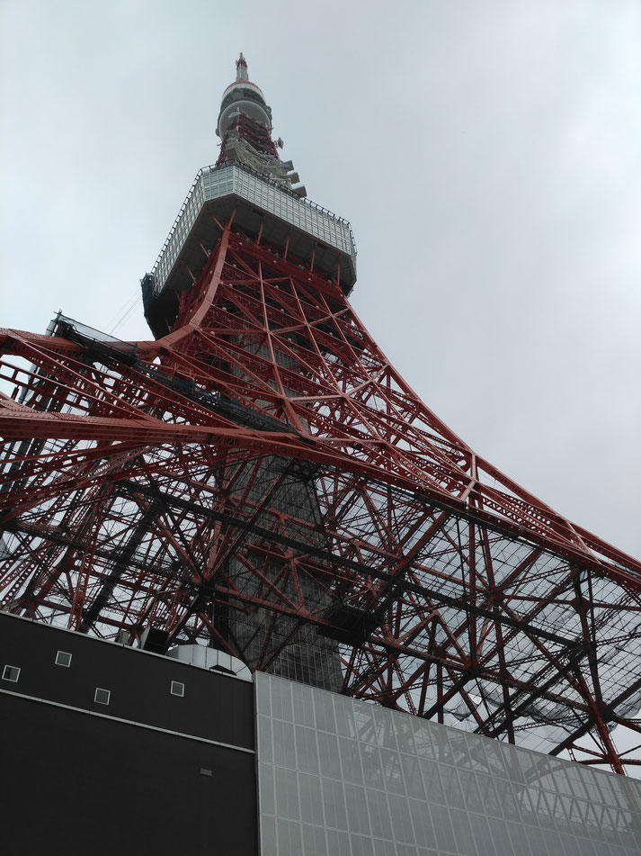 onegai kaeru all rights reserved  tokyo tower