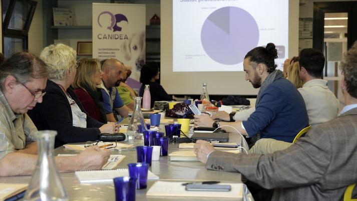 Participants installés à des tables en longueurs face à un tableau. En fond un kakémono de Canidea