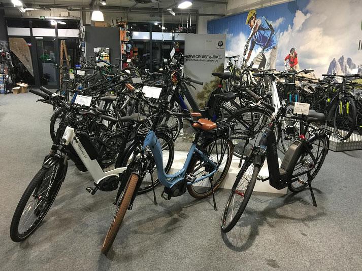 Unsere Experten in Hamm können Sie bei allem rund um's Lasten e-Bike beraten