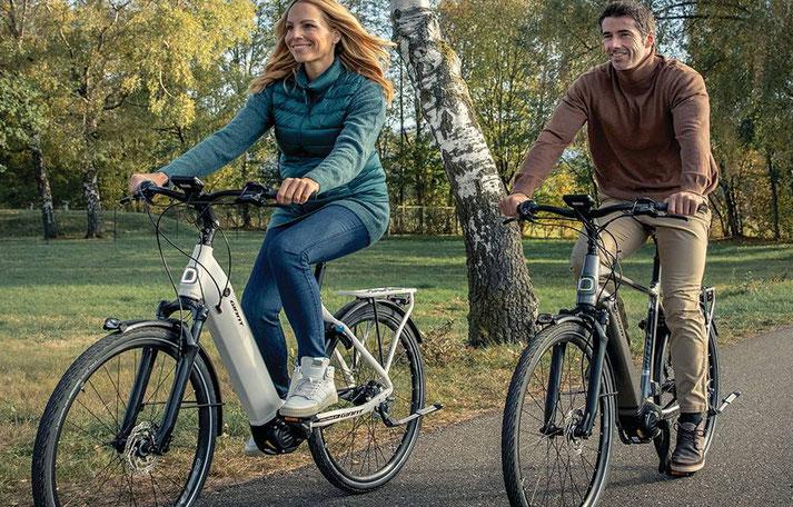 Giant Dailytour E+ 2020 e-Bikes