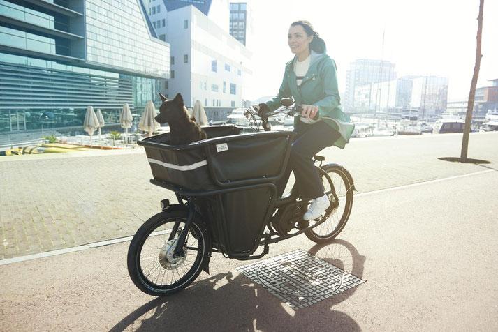 Lasten e-Bikes im e-motion e-Bike Premium Shop in Hannover probefahren, vergleichen und kaufen