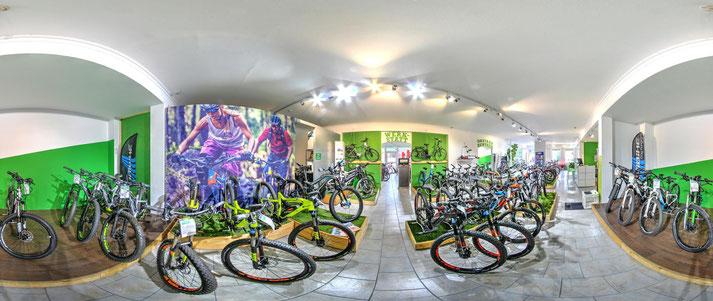 Unsere Experten in Frankfurt können Sie bei allem rund um's Lasten e-Bike beraten