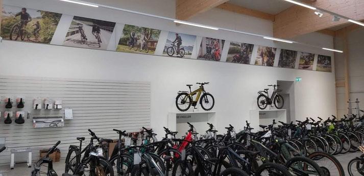 e-Bike Service in der e-motion e-Bike Welt Westhausen