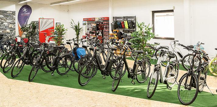 Raliegh e-Bikes und Pedelecs in der e-motion e-Bike Welt in Nürnberg