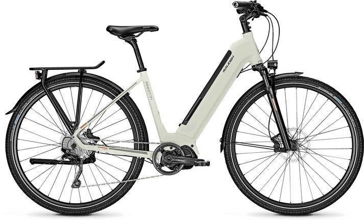 Raleigh Preston 10 Trekking e-Bike 2020
