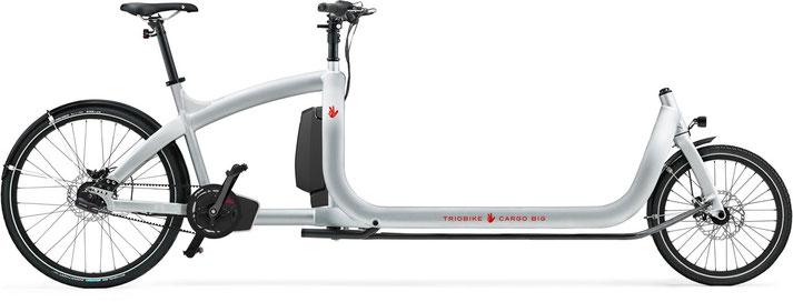 Triobike Cargo Big e-Bikes 2020