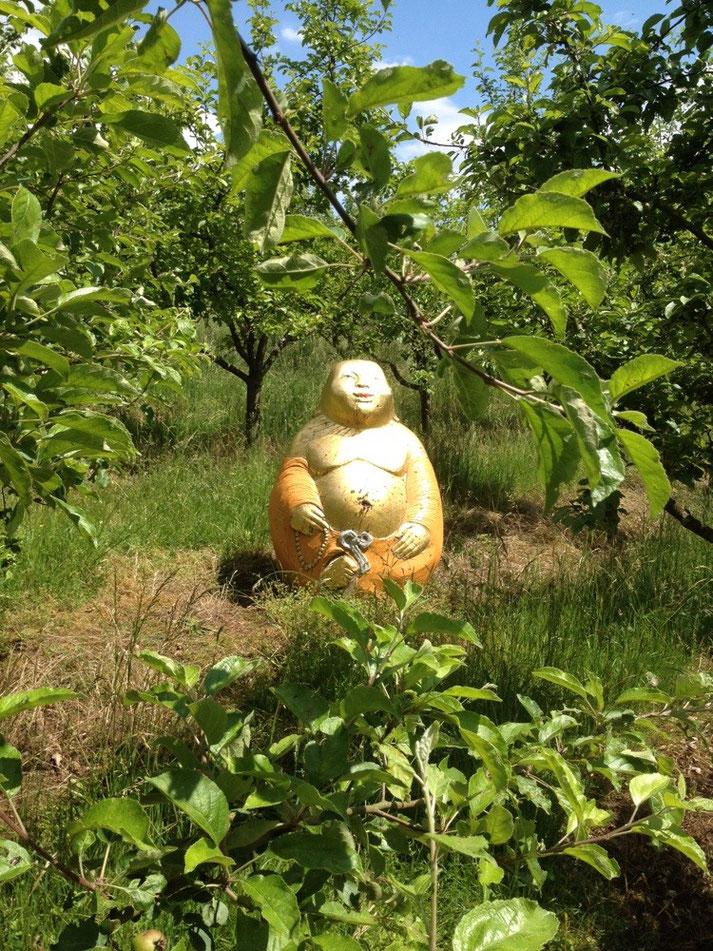 Der Lachende Buddha, Schaugarten Buchschwabach