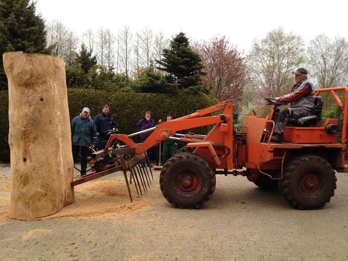 2 Tonnen Stamm wird aufgestellt