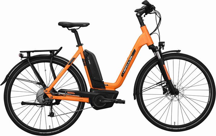 Hercules Futura Sport 8.2 - Trekking e-Bike 2019