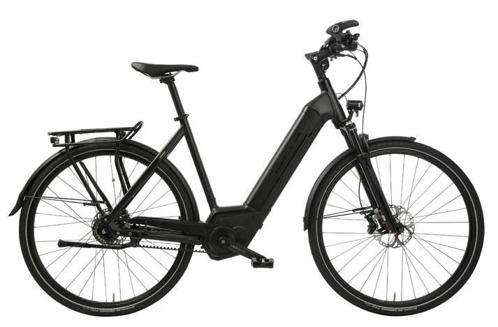 Hercules Futura Pro - City / Trekking e-Bike 2019