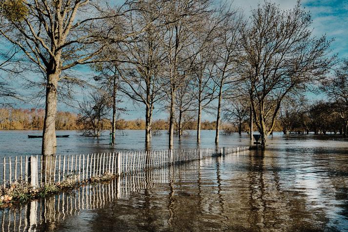 Crue 2021 Chalonnes sur Loire - Stephane Moreau Photographe