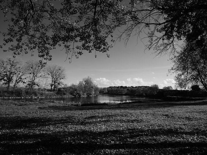 Stephane Moreau Photographe Chalonnes sur Loire Mariage Portrait Famille fujifilm gfx50r gfx100