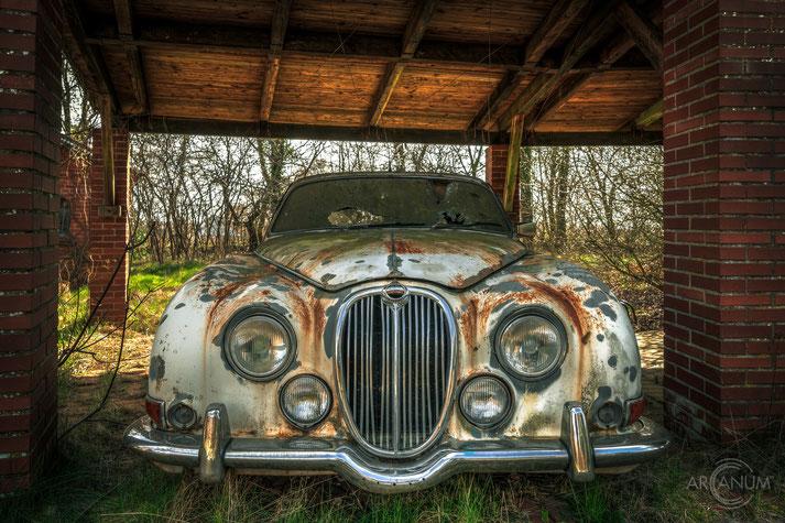 Abandoned Vintage Jaguar