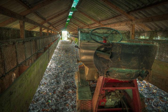 Abandoned Mink Farm in Denmark