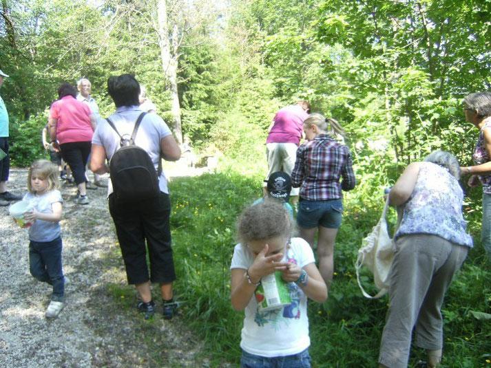 Oma-/Opa-Wochenende der KAB im Bildungshaus Obertrubach