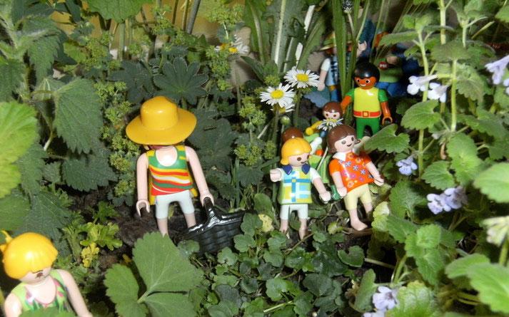 Kräuter sammeln im Kleinen in der Playmobil-Wildkräuterkiste