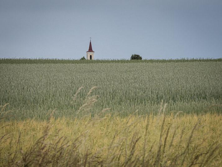 4 x jeweils irgendwo nahe der Grenze, nahe der Landstraße, nahe der Felder...