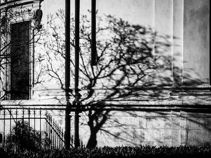 Baumschatten an der Fassade des Mausoleums
