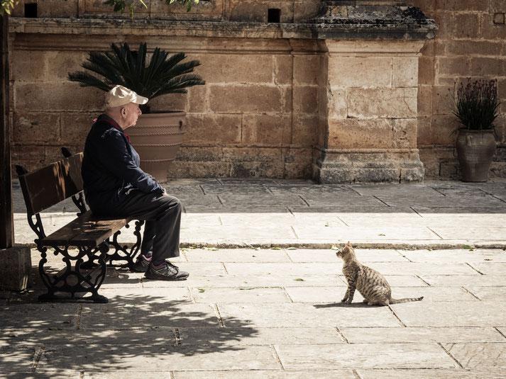 """""""street photography"""" - eine von vielen Begegnungen mit Katzen auf Kreta"""