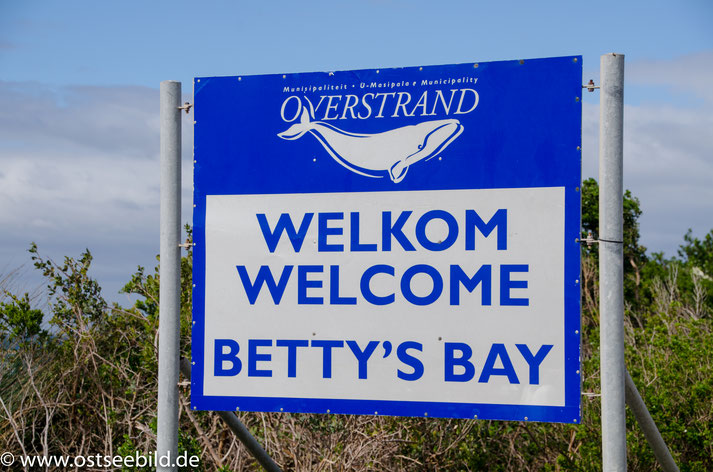 Schild an der Cape Whale Route. Welcome to Betty's Bay