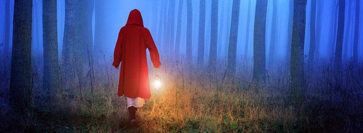 Fundierte Geschichten erzählen mit dem Rotkäppchen-Prinzip