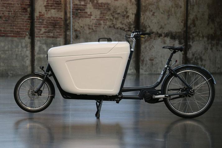 Babboe Pro Bike Mittelmotor