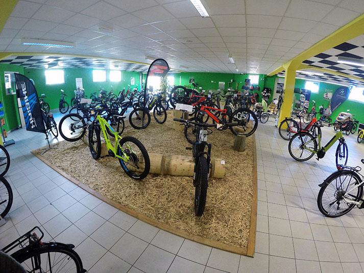 e-Mountainbike Markenvielfalt und grosse Auswahl in der e-motion e-Bike Welt Bern