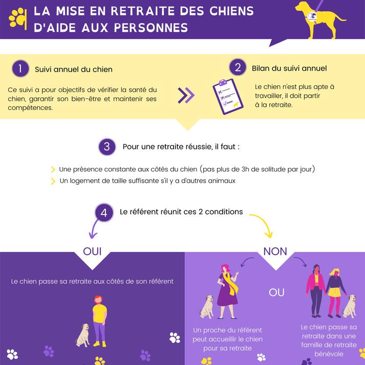Infographie décrivant la mise en retraite des chiens en 4 points : suivi, bilan, conditions pour une retraite réussie et comment peut le référent peut y répondre