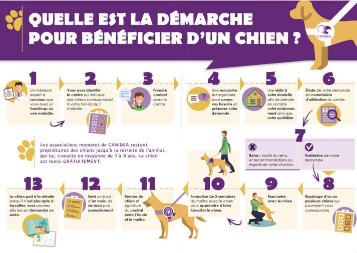 infographie de la démarche pour bénéficier d'un chien guide ou d'assistance en 13 étapes