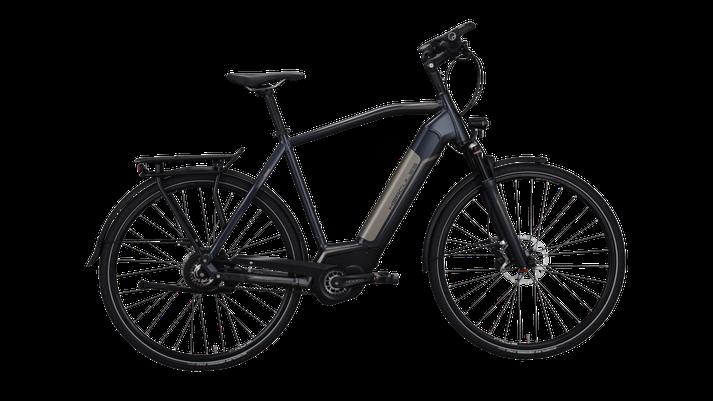 Hercules Futura Pro I-F360 - Trekking e-Bike - 2019