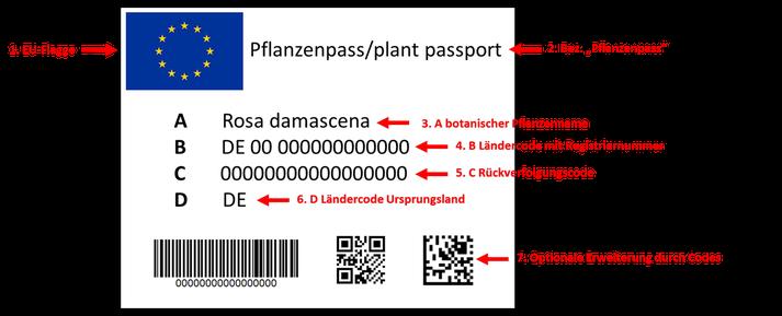 Beispiel-Etikett EU-Pflanzenpass Niesel-Etikett