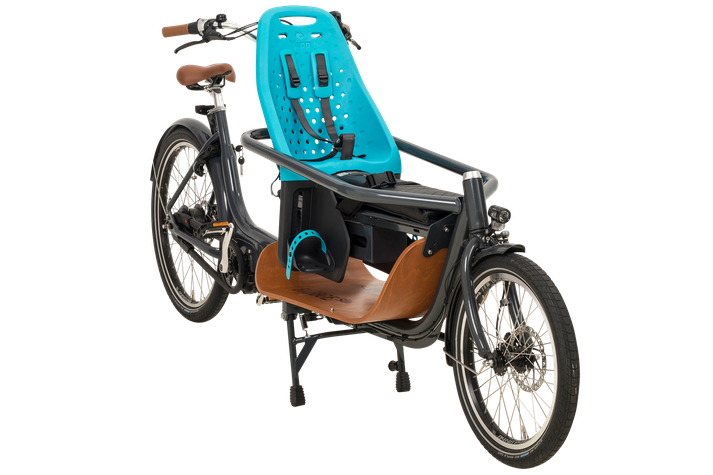 Babboe Mini Mountain Lasten e-Bike, Lastenfahrrad mit Elektromotor, e-Cargobike 2020