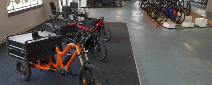 Lasten e-Bikes kaufen und probefahren in der e-motion e-Bike Welt Karlsruhe