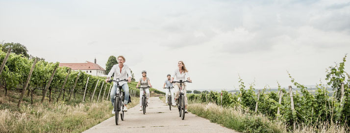 Winora e-Bikes und Pedelecs in der e-motion e-Bike Welt in Münchberg