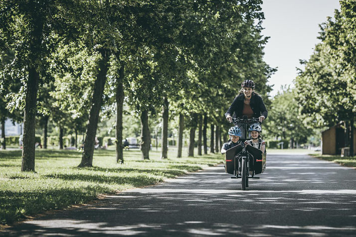 Unsere Experten in Schleswig können Sie bei allem rund um's Lasten e-Bike beraten