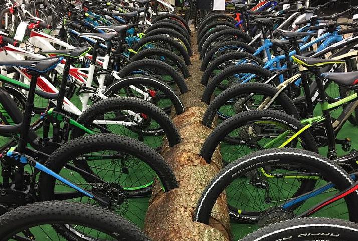 Im Shop in Ravensburg können Sie alle unterschiedlichen Ausführungen von Trekking e-Bikes kennenlernen.