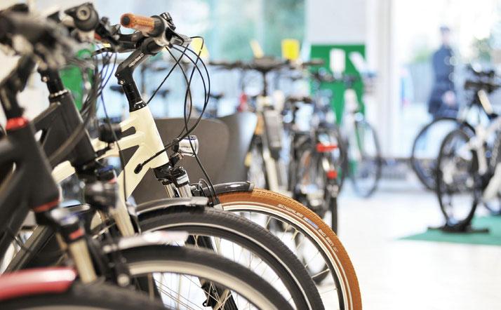 Lexikon rund ums e-Bike