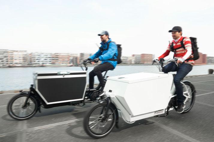 Urban Arrow e-Bikes in der e-motion e-Bike Welt in Wiesbaden