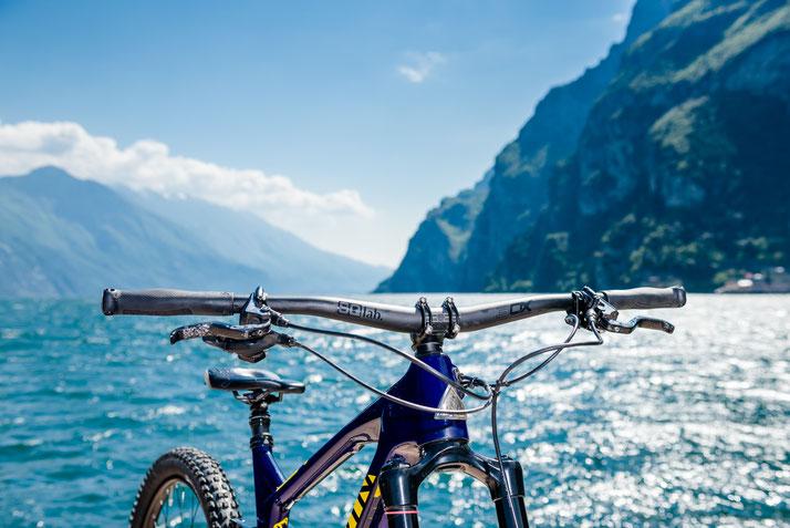 SQlab Lenker fürs e-Bike - ergonomisch, leistungsstark und komfortabel