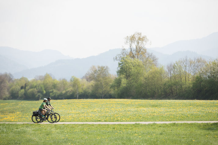 In Karlsruhe können Sie auch Trekking e-Bikes für eine geplante Tour mieten.